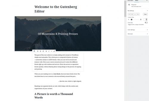 Příspěvek v editoru Gutenberg.